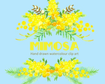 Mimosa.Watercolor Clipart digital Hand Drawn. Romantic wedding clipart, Yellow bright flowers, spring, fresh floral disign, watercolour