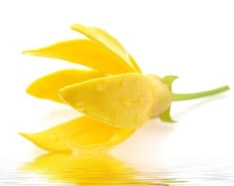 Ylang-Ylang (Organic), Essential Oil