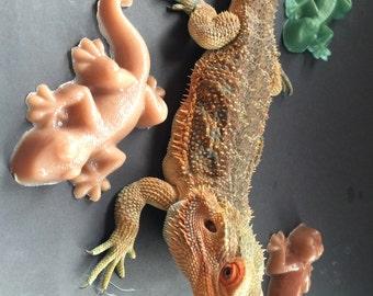 Lizard Soap, Gecko, Reptile, Sulfate Free