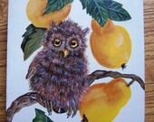 Owl and Pear Wood Cigar Box