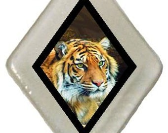 Pin & Donation SAVE THE TIGERS! rescued window glass