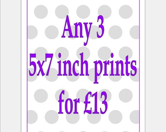 Any 3/Three 5x7 inch Prints - Choose the Prints and Colours you would like