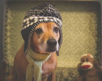 Gypsy Dog Photo print
