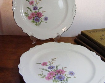 Vintage Homer Laughlin Virginia Rose Plates - Set of Two (2)