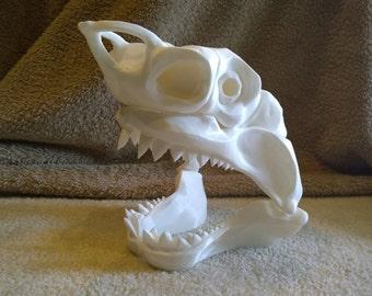Shark Skull