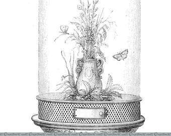 Vintage Glass Dome with Butterflies Clipart / Vivarium - Victorian Antique Printable Graphics Clipart - Instant Digital Download Image.