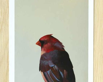 You'd Be Amazed At The Things You Can Learn From A Shut-In 8 x 10 Art Print - Bird - Cardinal - Animal - Nature - Gift