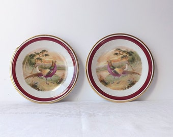 2 Pheasant Bird Game Plates, Vintage Schwarzenhammer Imperial Germany, Porcelain Salad Plates, Woodland Home Decor