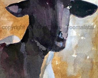 Sheep art Sheep painting Sheep PRINT 8.5 X 11 paper size Sheep watercolor Dark faced sheep original watercolor painting