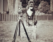 "Dog Photographer Photo ""Pipographer"" - 8x8 Square Black and White Photography Print - Funny Dog Art"