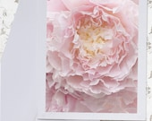 Peony Photo Notecard - Flower Note Card, Greeting Card, Stationery, Blank Notecard