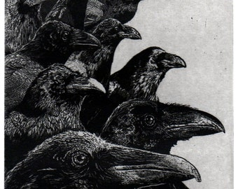 Raven artwork , Raven, crow,  etching 5 x 7 inch 2011