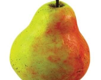 Juicy Pear Soap  ( Fruit Soap, Soap Art, Decorative Soap, Handmade Soap ) Body Kantina