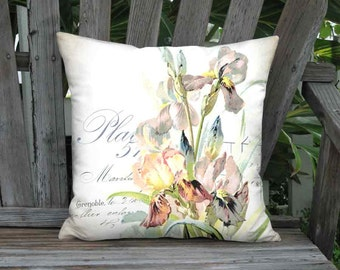 Pillow Cover - Pillow - Plate 51 Bearded Iris and French Script Pillow - 16x 18x 20x 22x 24x 26x 28x 30x 32x Inch Linen Cotton Cushion Cover