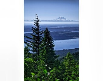 Mount Rainier viewed through Pine Trees from Olympic National Park in Washington State No.0211 - A Vertical Fine Art Landscape Photograph