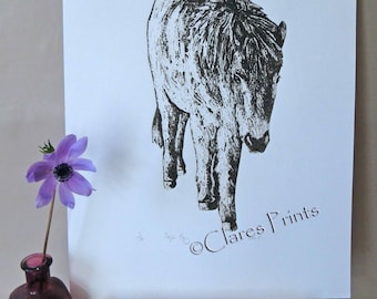 Horse Pony Art Print Limited Edition Hand-Pulled Collograph