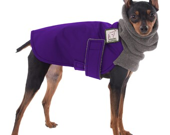 MINIATURE PINSCHER Winter Dog Coat, Winter Coat, Dog Coat, Dog Clothing