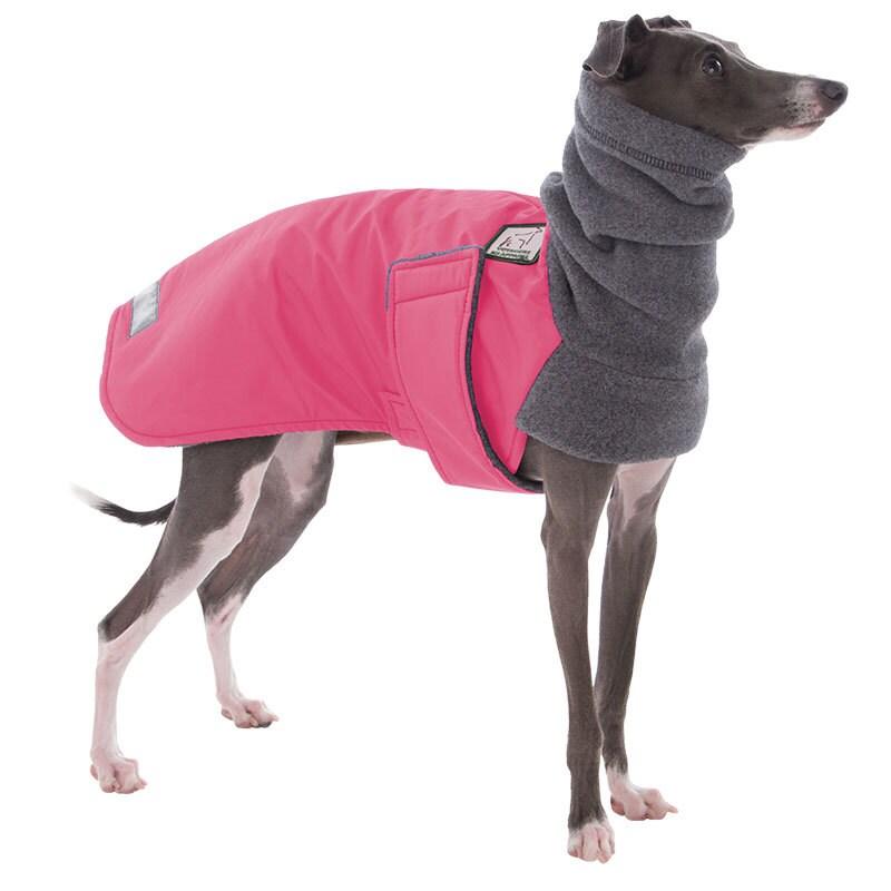 ITALIAN GREYHOUND Winter Coat Waterproof Dog Coat Jacket