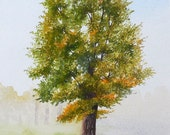 White Ash Tree Original Watercolor Painting