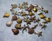 34 Small Starfish and Seashell Charms in Various Colors - C2020