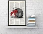 Hermit Crab in its Shell Dictionary page, Wall decor, ocean life art, wall art seashore house decor print, sea life Hermit crab BPSL044