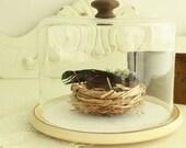 Peek-a-boo, I see you! - Pfaltzgraff Village Cheese Keeper - Vintage Glass Dome Display - Glass Photo Prop - Discontinued Serveware