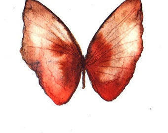 rust red brown butterfly original watercolour painting 7 x 5""