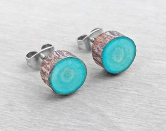 Turquoise Wood Slice Stud Earrings - Bark Earrings - Hardwood Faux Plug Fake Gauge Post Earrings with Surgical Steel posts