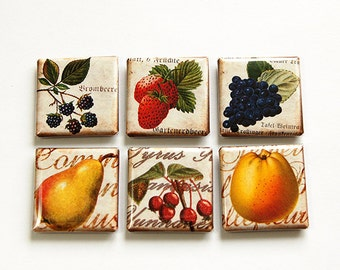 Fruit Magnets, Food Magnets, Magnets, Kitchen Magnets, Fridge Magnets, Square Magnets, button magnets, Pear, Strawberry, Grapes (4620)