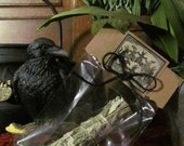 Black Sage (Mugwort) Smudge Stick: Sacred Blessing Smudge Cupboard, incense, purification, apothecary, invoking, cleansing, smudge stick