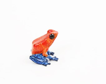 Strawberry Poison dart frog - Bronze (small)