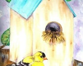 Birdhouse and Bird Watercolor Print, Goldfinch On Tree Branch Painting, Animal Art, Nature Picture, Yellow and Black Bird