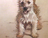 WHITE CAIRN TERRIER Dog Signed mounted 1928 Cecil Aldin Cairn terrier dog plate print Christmas gift Thanksgiving present Unique present