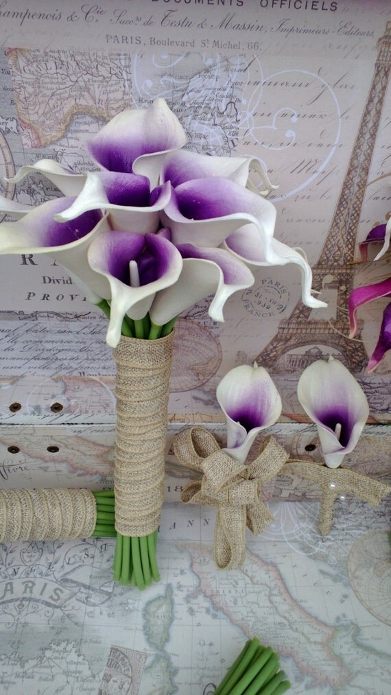 Wedding Flowers Available In October In Australia : Items similar to white purple center calla lily wedding
