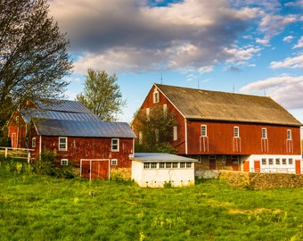 Red barn on a farm in rural York County, Pennsylvania - Rural Landscape Fine Art Print or Wrapped Canvas