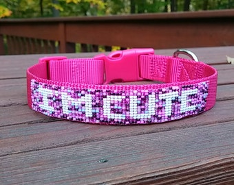 I'M CUTE - The Total Personalized Beaded Dog Collar