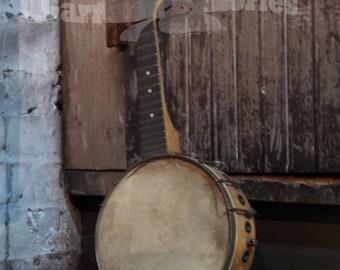 Banjolele Photo Musician Musical Banjo