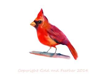 Red Cardinal Clip Art Bird