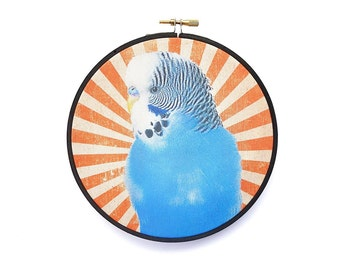 Budgie Print in Embroidery Hoop, Cotton Print of Parakeet with Starburst Backdrop for Wall Decor, Wall Art, Home Decor, Wall Hanging