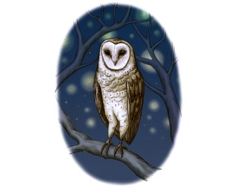 Barn Owl at night giclee Art print printed on archival paper with archival inks signed and dated available in A4, A3 and A2