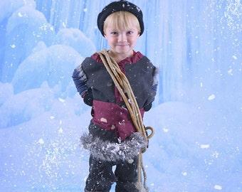 Photography Backdrop - Frozen Backdrop, Winter Backdrop, Snow Backdrop, Christmas Backdrop, Holiday Backdrop, (FD5020)