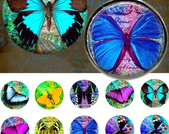 Butterfly - Bottle Cap Images 4x6 Digital Collage INSTANT DOWNLOAD
