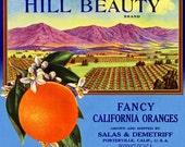 Vintage Hill Beauty California Oranges - Crate Label - DIGITAL IMAGE - Use in Craft Projects -or- DIY Print & Frame - Immediate Download