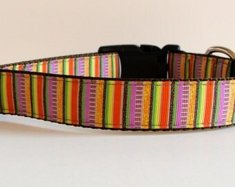 READY TO SHIP! Fall Stripes Dog Collar