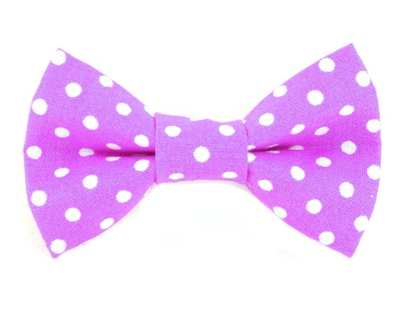 cat or small bow tie white polka dots on magenta