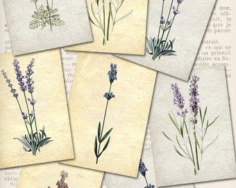 Lavender ATC 2.5 x 3.5 inch steampunk instant download digital collage sheet VDATVI0853