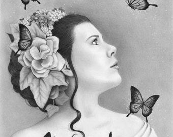 Papillon - 11x14 original pencil drawing - Free shipping