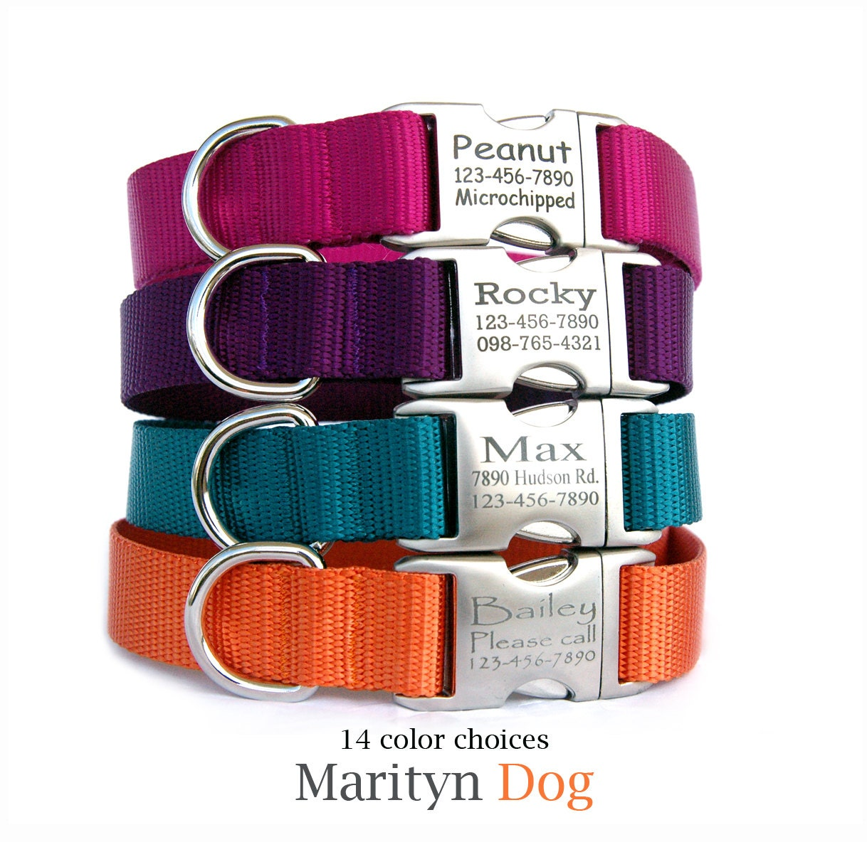 Dog Collars With Tags Built In Uk