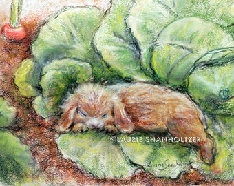 "Animal babies wildlife print , ""Bunny Asleep In Cabbage Patch"" Rabbit art, Nursery , Canvas or Cotton art paper print, Laurie Shanholtzer"