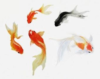 Goldfish Art, Watercolor Goldfish Painting, Sumie  Fish Art Print, Goldfish Gift, Goldfish , SeaLife Art, SeaLife Print, Fish Print, Fish